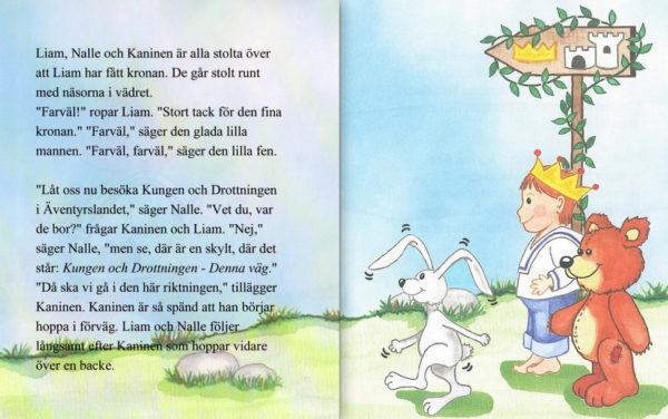 Babyboken pojke 8